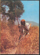 °°° 1711 - CAMERUN - JEUNE CHASSEUR - 1983 With Stamps °°° - Camerun