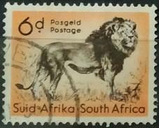 SUDAFRICA - AFRICA DEL SUR 1954 Local Animals. USADO - USED. - África Del Sur (1961-...)