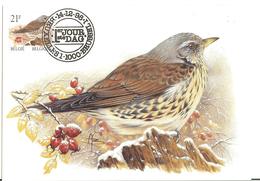 MC BUZIN / Grive Litorne / Kramsvogel / Turdus Pilaris / Fieldfare / Wacholderdrossel   2000 - Songbirds & Tree Dwellers