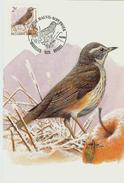 MC BUZIN / Grive Mauvis / Koperwiek / Turdus Iliacus / Redwing  / Rotdrossel  1996 - Sperlingsvögel & Singvögel