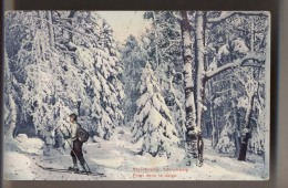 Ski De Fond - Foret Dans La Neige - SKIEUR - Colorisée - Sports D'hiver