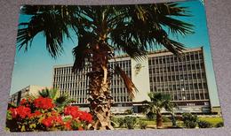 KUWAIT, MINISTERY OF GUIDANCE, MINISTERO DELLE IMFORMAZIONI- ORIGINAL OLD POSTCARD - Kuwait