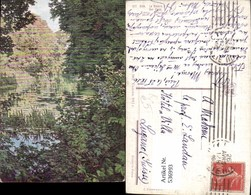 536993,Künstler AK Biva Der Fluss Schilf Wald - Unclassified