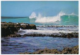 Big Surf, Australian Coastline - (Australia) - Australië