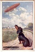 Dachshund Dog Mesmerized By Flying Zeppelin That Looks Like Sausage BKWI Edition - Dogs