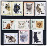 POLAND 1964 Cats Set Of 10 MNH / **.  Michel 1475-84 - 1944-.... Republic