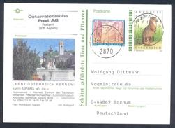 Austria 2002 Postal Stationery Card ASPANG Fauna Squirrel Eichhörnchen Tourism Church Kirche Architecture Fountain - Nager