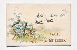 Ancienne Carte Pub CACAO DRIESSEN - Fabrique De Chocolats, Usines à Vapeur, Rotterdam / Motif Hirondelles En Relief - Chocolade