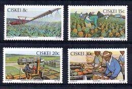 Ciskei - 1982 - Pineapple Industry - MNH - Ciskei