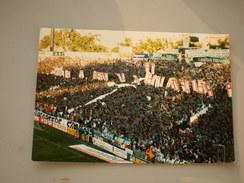 Ultras Betis, Betis Sevilla 1996 1997 - Fútbol