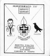 PORTUGAL CNE SCOUT CALDAS DA RAINHA AGRUPAMENTO 337 Sticker - Scoutisme