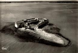 Fort Enet Au Fond L Ile D Aix Vue Aerienne - France