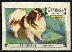 Meurisse - Ca 1930 - 67 - Les Chiens, Dogs - 3 - Japonais, Japanese Dog - Sonstige