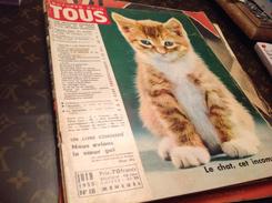 Livres-bd-revues Lectures-pour-tous  1955 Le Chat Cet Incompris - Livres, BD, Revues