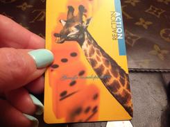 Télécarte  Girafe - Télécartes