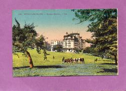 EVIAN LES BAINS - Royal-Hôtel - Evian-les-Bains