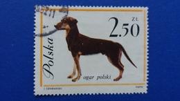 POLAND 1963 DOGS FISCHER 1232 - 1944-.... Republic