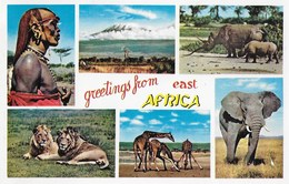 VEDUTA VARIE DELL'AFRICA - NUOVA NV - Cartoline