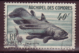COMORES - 1954 - YT N° 13 - Oblitéré - Faune Marine - Gebruikt