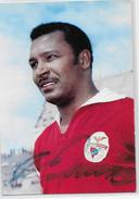 """PORTUGAL- BENFICA -Mario Coluna-(Autografado E Com Dedicatoria)  """"Apelido  O Monstro Sagrado"""". - Soccer"""