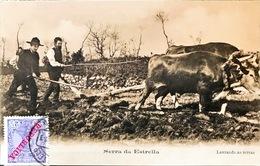 PORTUGAL.SERRA DA ESTRELLA. .LAVRANDO AS TERRAS. SIN EDITOR - Portugal