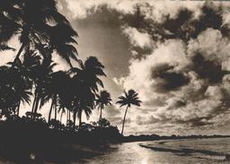 TAHITI COTE OUEST - Tahiti