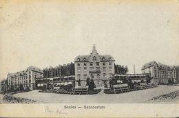 Saales (Bas-Rhins) - Sanatorium - Edition G. Schmitt - Health