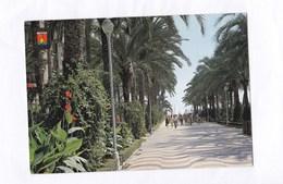 Espagne Alicante Rambla De Mendez Nunez Esplanada De España  N°149  TBE - Alicante