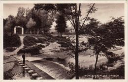 Montevarchi (Ediz. G. Verniani, Montevarchi) Photopostcard Not Travelled B170312 - Altre Città