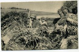 Editeur Georges Lang Aux Manoeuvres Observatoire D'Infanterie - Manoeuvres