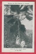 Archipel Des Fidji - Jeunes Filles De La Colonie Indienne (voir Verso) - Fidji