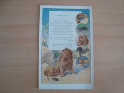 Image Publicitaire PNEU BERGOUGNAN Le Lion Et Le Rat - Cars