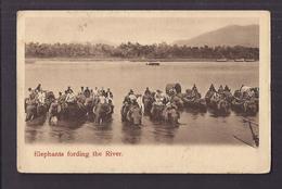 CPA STRAITS SETTLEMENTS - SINGAPOUR ? - Elephants Fording The River - SUPERBE PLAN ANIMATION + Jolie Oblitération - Postcards