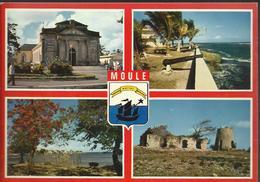 Guadeloupe - Moule - Multivue - Guadeloupe