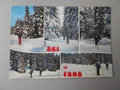 SPORTS D'HIVER SKI DE FOND - Sports D'hiver
