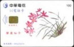 TK11039 TAIWAN - Chip IC01C020