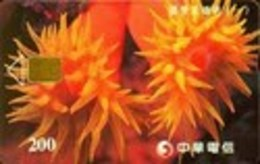 TK11060 TAIWAN - Chip