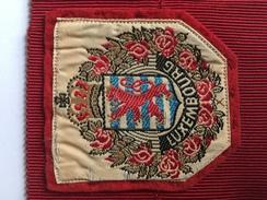 "LUXEMBOURG ""écusson En Tissu Brodé"" Ancien. - Blazoenen (textiel)"