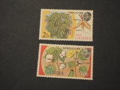 GAMBIA - 1973 PIANTE E FIORI  2 VALORI  - NUOVI(++) - Gambia (1965-...)