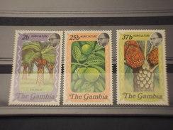 GAMBIA - 1973 PIANTE E FRUTTI  3 VALORI  - NUOVI(++) - Gambia (1965-...)
