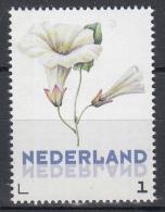 Nederland - Uitgiftedatum 20 Maart 2016 - Janneke Brinkman - Akkerwinde - Flora/bloemen/planten - MNH - Netherlands