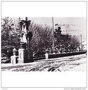 VLCATPA3175CPA-LFTD7874TBES.Tarjeta Postal DE VALENCIA.Arboles,ARTE.esculturas.ENTRADA AL PARQUE DE CARCAGENTE.Valencia - Esculturas