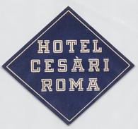 """D5625 """" HOTEL CESARI - ROMA - ITALIA"""" ETICHETTA ORIGINALE - ORIGINAL LABEL - Adesivi Di Alberghi"""