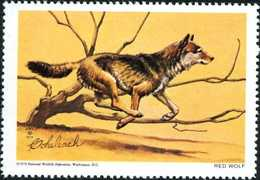 USA 1970. Red Wolf, Loup. Endangered Species. Timbre / Vignette (4,5 X 6 Cm), NWF - Chiens