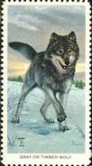 USA 1973. Gray Wolf And His Habitat, Loup. Timbre / Vignette, National Wildlife Fed. - Chiens