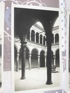 BOLOGNA  Palazzo Bevilacqua Bn Nv - Bologna