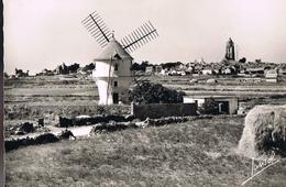 BATZ . Le Moulin De La Masse Et Le Bourg De Batz . - Batz-sur-Mer (Bourg De B.)