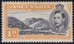 Ascension     .    SG     .    39a   P.  13 1/2 .     *    .    Ongebruikt    .    /    .    Mint-hinged - Groot-Brittannië (oude Kolonies En Protectoraten)