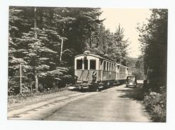 Suisse - Zoug  Tramway Entre Nidfuren Et Neuageri 1954 , Cpm - ZG Zoug