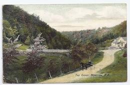 CPA Moncton Nouveau Brunswick Westmorland Canada The Gorge éditeur Acadian Series M  Coy Printing écrite 1907